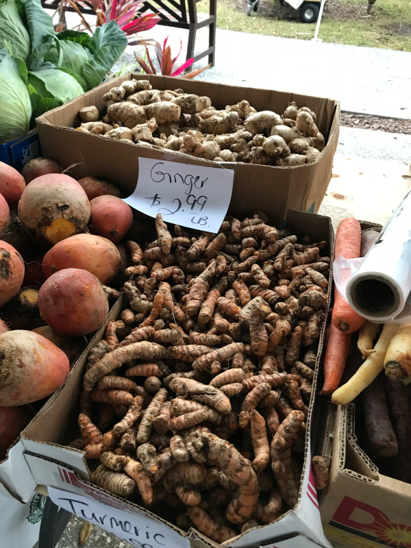 Fresh Turmeric Root at the Farmers Market on Saturday Morning.